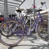 bike-1218092_1280